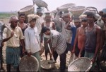 Wishing Wells: Baghela India First Spade