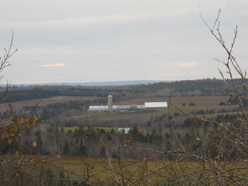 Overmars farm