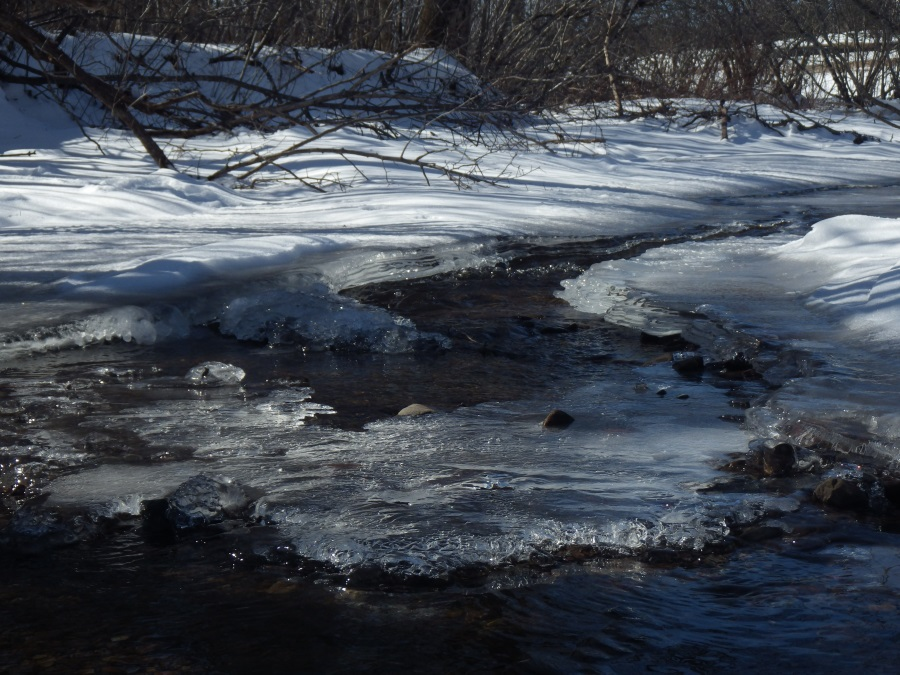 Winter Icy Babbling Brook