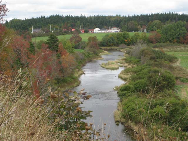 Lower South River